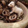 くるみの殻でマルチング。木の実や小物と一緒に乾燥防止の土隠し。